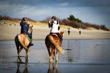 kerguelen-equitation